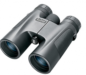 bushnell 10x42 powerview binoculars review